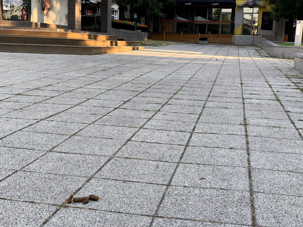 """Площад """"Тройката"""" в Бургас с непочистено изпражнение на тротоара"""
